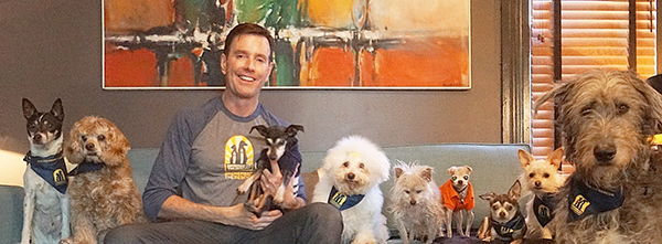 steve greig and his dogs