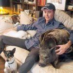 Man Can't Stop Adopting Senior Dogs