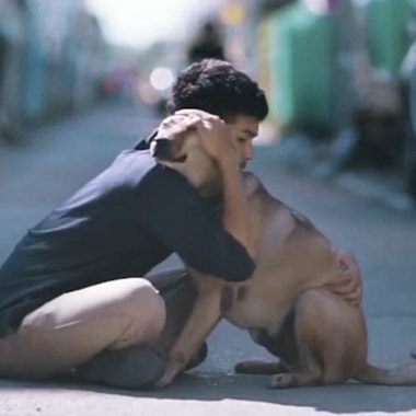 Boy Hugs Stray Dogs To Give Them The Love They Never Had