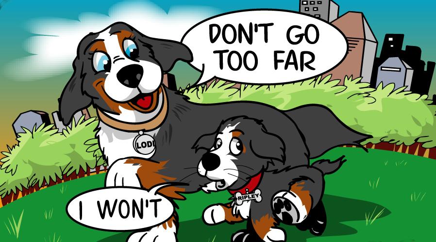 lodi and ripley the dog