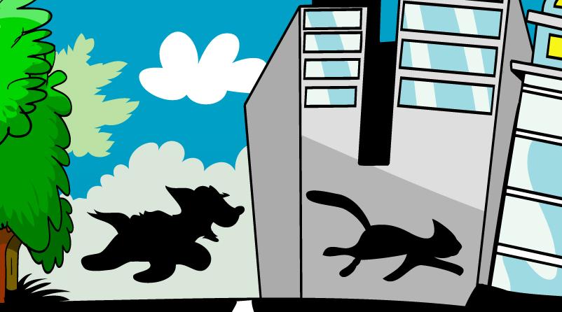ripley chasing a cat