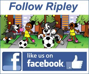 Follow Ripley the Dog on Facebook