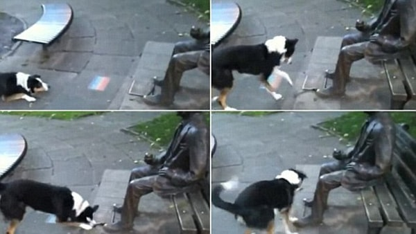 dog and statue