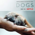 Dogs on Netflix Official Trailer